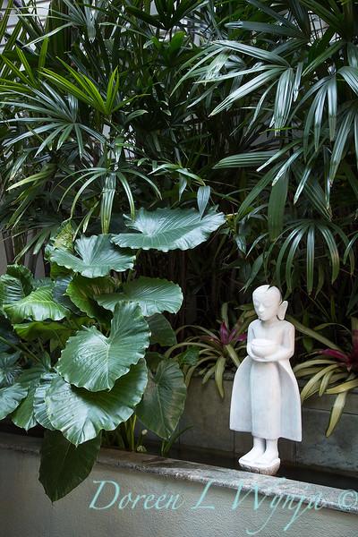 Debra's Vertical Garden_6016.jpg