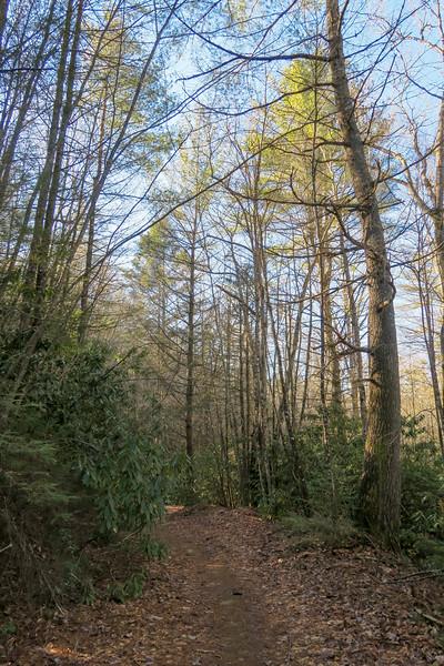 Burnt Mountain Trail -- 2,690'