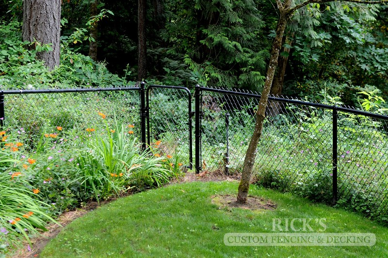 4137 - Black Chain Link Fencing
