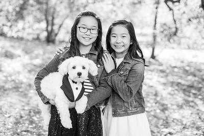 2018 Lin Family