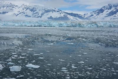 Hubbard Glacier & Wrangell St Elias NP
