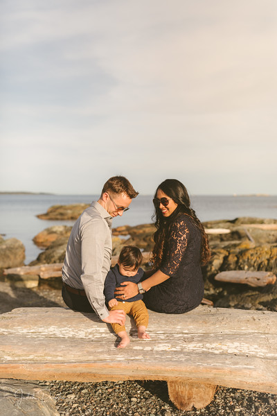 Baby Shower; Engagement Session; Mount Washington HCP Gardens; Chinese Village; Victoria BC Wedding Photographer-165.jpg