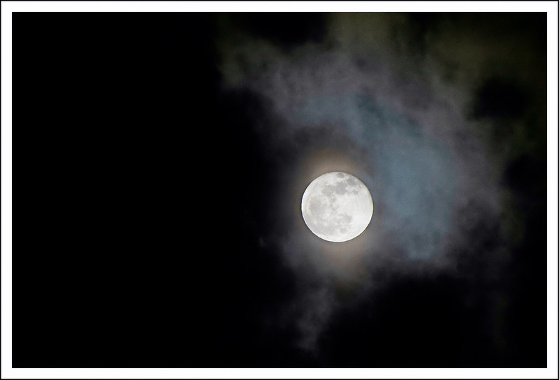 Every full moon perches in the sky over the back balcony.
