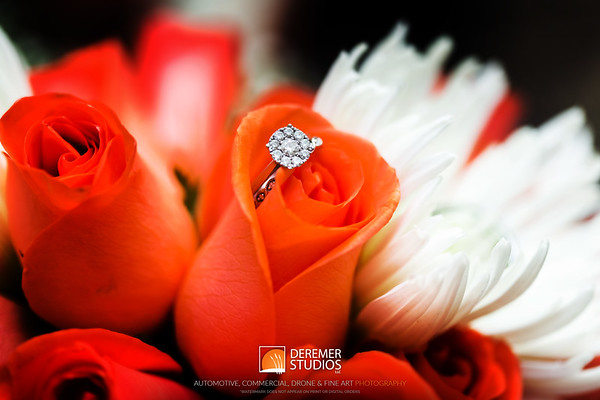 Deremer Studios Wedding & Portrait Photography - Jacksonville, FL