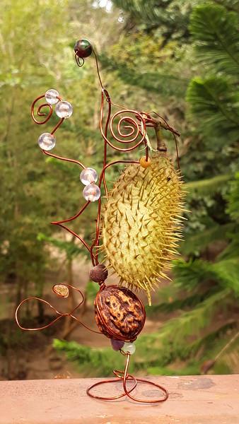 Kalumbibit = कुबेराक्षी = Kuberakshi =  Latakaranjah, Nicker seeds, link and info