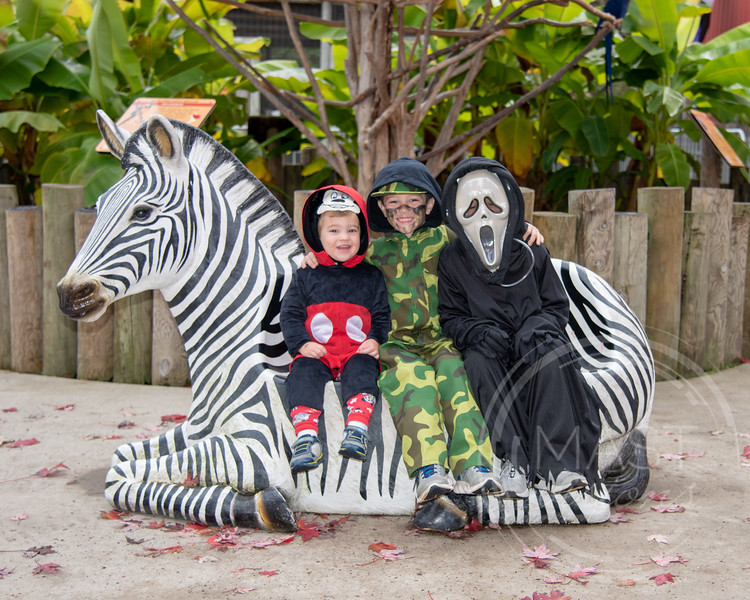 2018 Boo at the Zoo_109.jpg