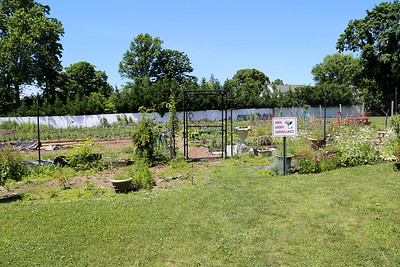 Monmouth University Garden Project