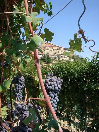 Northern Liguria and Piedmont