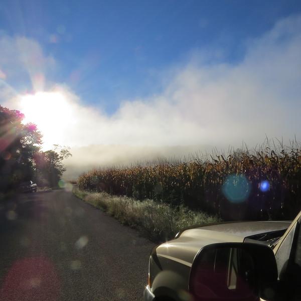 road and corne field in fog.JPG
