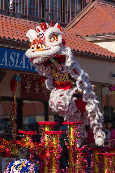 Pre Chinese New Year 2013 (6 of 24).jpg