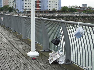 Rubbish Seen Around Southampton Water 2014 Onwards