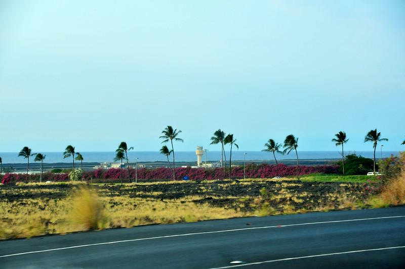 Big_Island_Trip_110.jpg