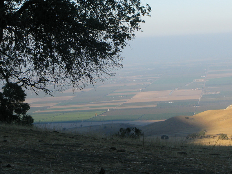 farmland in Arvin