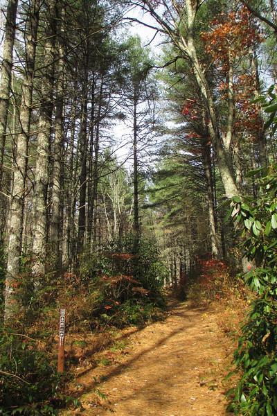 Great Wall Trail - 3,680'