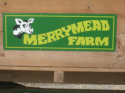 2nd Grade Visits Merrymead Farm