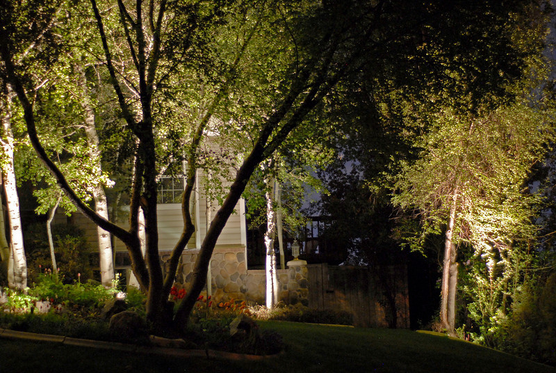 2011/5/10 – I love the landscape lights in my front yard. Sometimes I go out and go across the street and just sit and look at the lights. They give our home a nice warm and inviting feel that always makes me smile. I like how they emphasize the trees around the house.