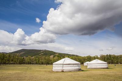 Terelj Saran (Mongolia)