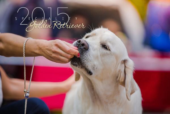 Golden Retriever Specialty, 24.05.2015