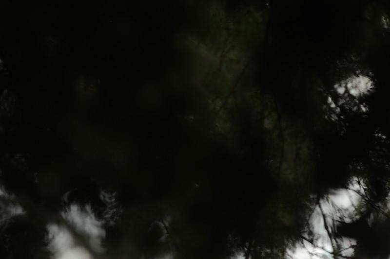PHO13017.JPG