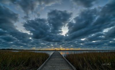 Galveston Island State Park & the Fred Hartman Bridge