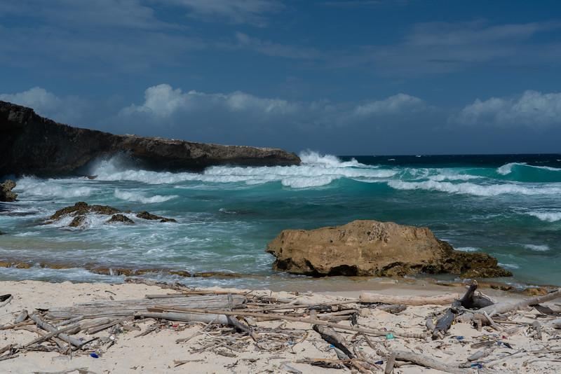 Aruba-410.jpg