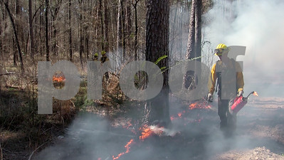 fire-is-good-for-protecting-the-landscape-and-improving-habitat