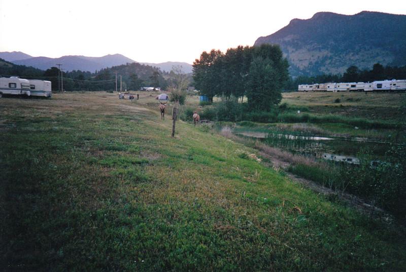 Estes Park_0016.jpg