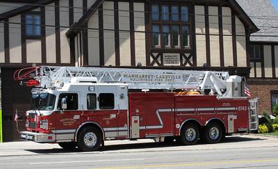 Ladder 8743