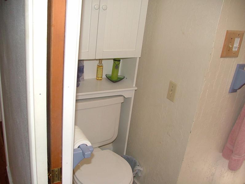 toilet in main bath