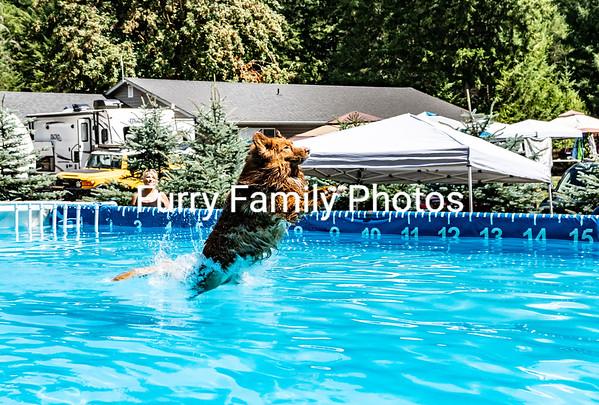 Saturday Splash 6