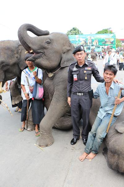 2014-11-14 Surin Elephant Welcome Feast 679.JPG