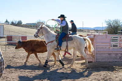 2017-Sunday Roping-0003