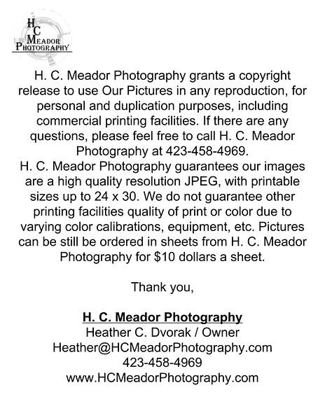 copyright release.jpg