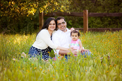 The Mishra Family Mini-Session