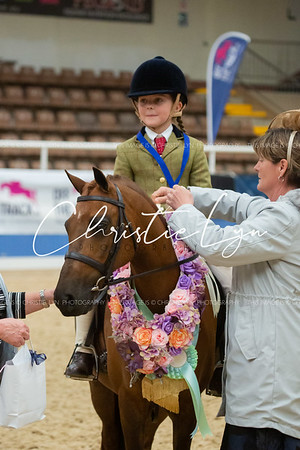 Class 8: First Ridden Show Hunter Pony 12.2 hh & under (Rider under 12 years)