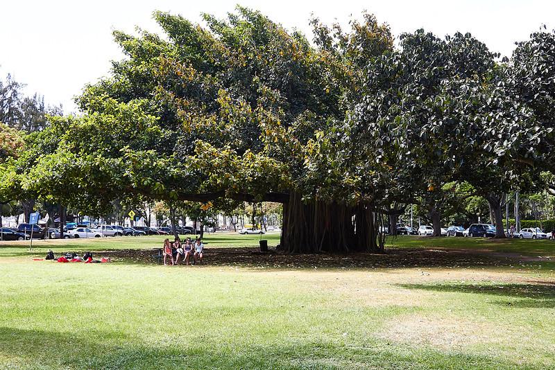 Hawaii-IMG_2328_.jpg