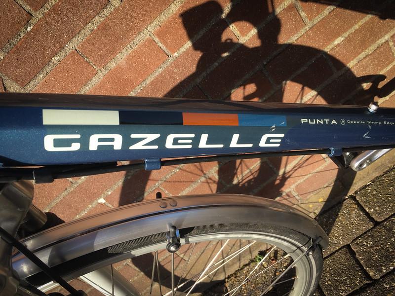 Gazelle-7005.jpg