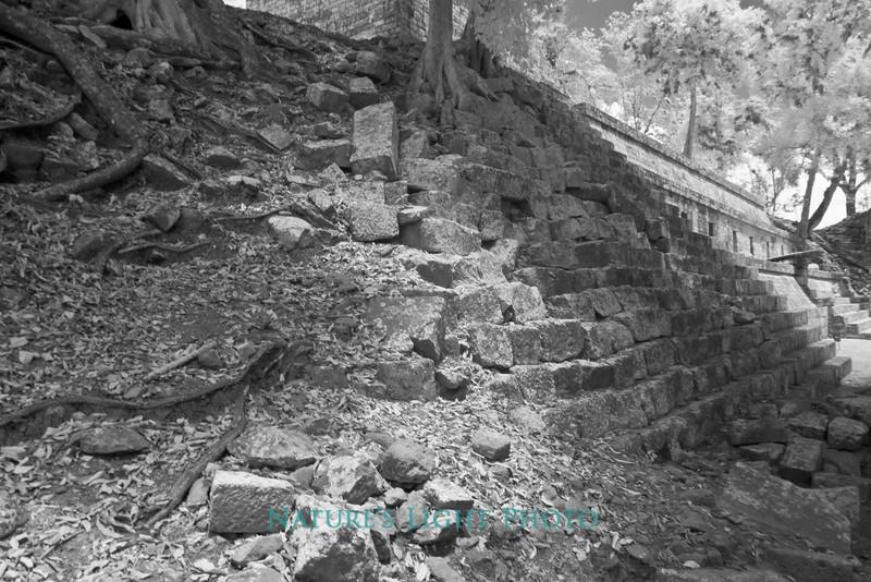 Restoration Progression, Copan, Honduras-6340