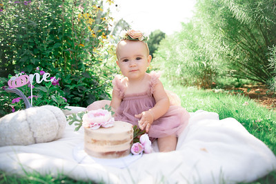 Estelle Baby First Birthday Cake Smash Batchelor Family Summer Portraits Outdoor Nature Natural Happy Candid Formal Kid Mom Dad Husband Wife Love Pretty Enfield Ct Conn Connecticut Suffield Agawam Ma Mass Massachusetts Westfield Mill Crane Pond Baby Photo