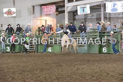 Bull Riding 04-28-13