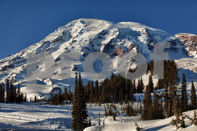 Mt. Rainier on a winter day as seen from the paradise Visitor Center.