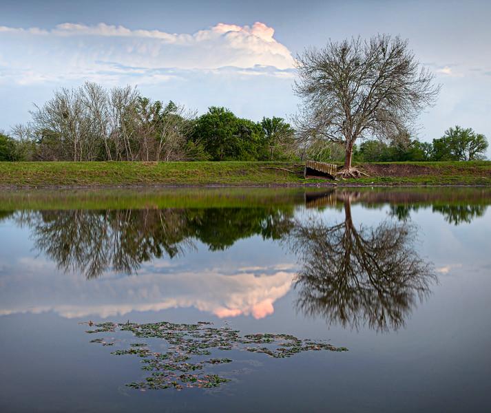 Texas Reflection