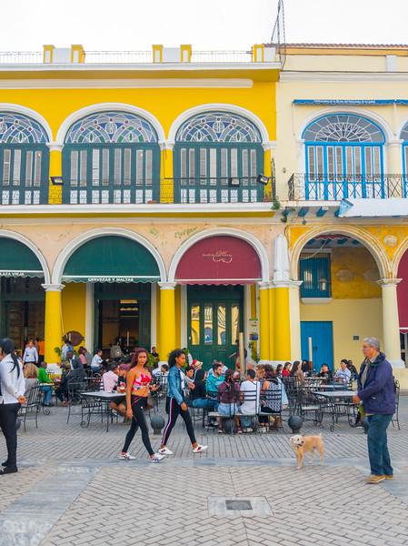 Old Havana Factoria Plaza Vieja-2.jpg