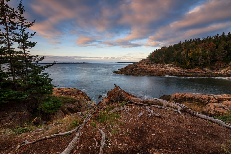 Acadia Viewpoint