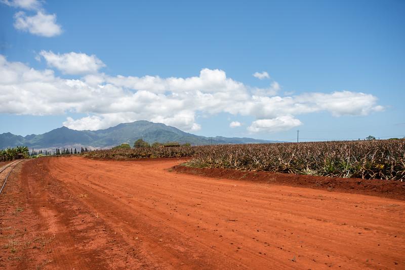 Hawaii2019-609.jpg
