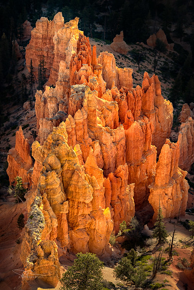 Glowing Hoodoos, Bryce Canyon