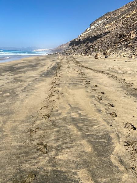 Ons spoor op het strand.JPG