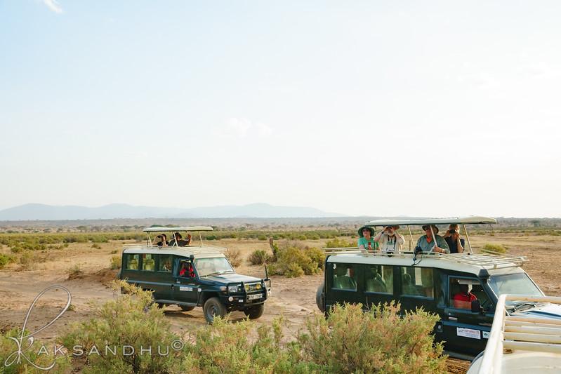 Safari-Africans-006.jpg