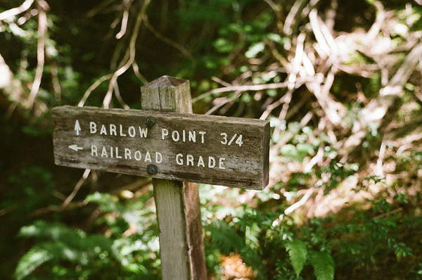 Barlow Point