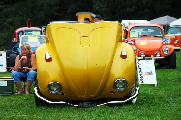 2010 VW Show